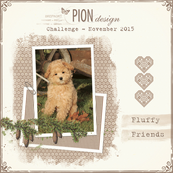 pion-challenge-nov15