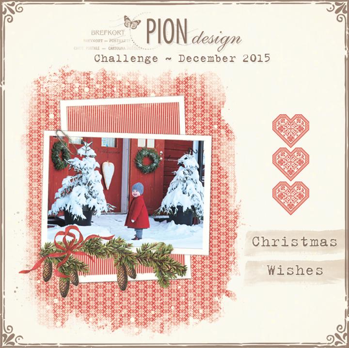 pion-challenge-dec2015