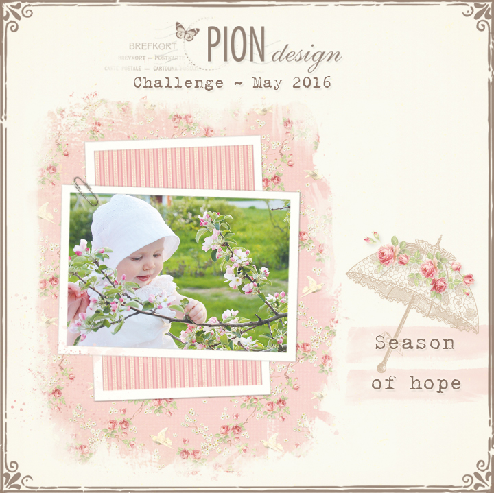 pion challenge may 2016